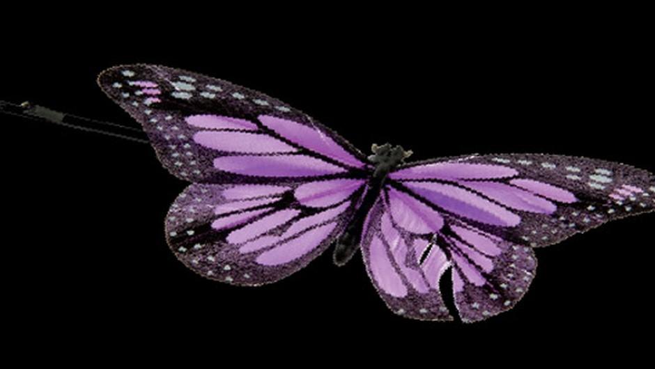 Maškare: Pridna čebelica ali pisan metulj? (foto: promocijski material in Story arhiv)