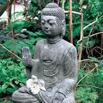 Feng šuj za energijo, moč in veselje do življenja (foto: moj lepi vrt)