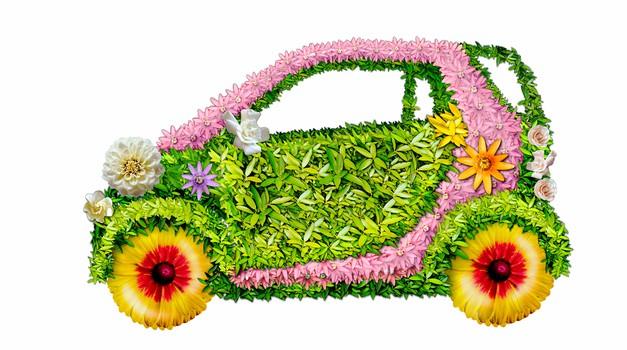 Alternative prihodnosti: Avtomobili na rožice in repično olje? (foto: shutterstock)