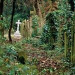 Pokopališče Highgate – London (foto: Lisa arhiv)