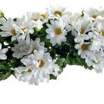 Za večno  pomlad: Cvetje, Madal Bal (3,95€) (foto: Alex Štokelj)