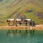 Ne le čarobna mesta, očarala te bo tudi azerbajdžanska narava. (foto: Shutterstock, arhiv cosmopolitana)