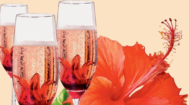 Izbrani hit letošnejga poletja - šampanjec s hibiskusovim cvetom. (foto: Shutterstock, Arhiv proizvajalcev, Lara Robby/Studio D)
