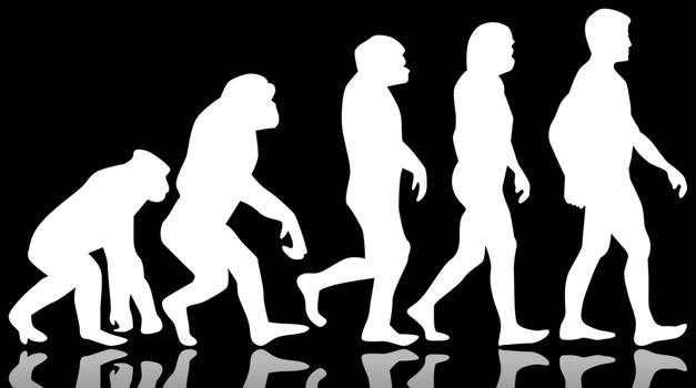 Znanstveniki odkrili novo vrsto pračloveka (foto: shutterstock)