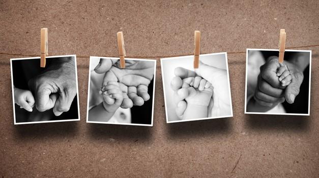 Richard Dawkins: Čudoviti svet, v katerem smo si vsi sorodniki! (foto: shutterstock)