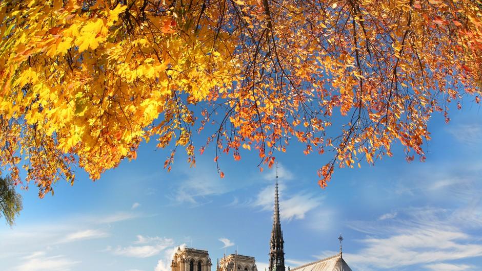Pariška katedrala Notre-Dame praznuje 850 let (foto: shutterstock)