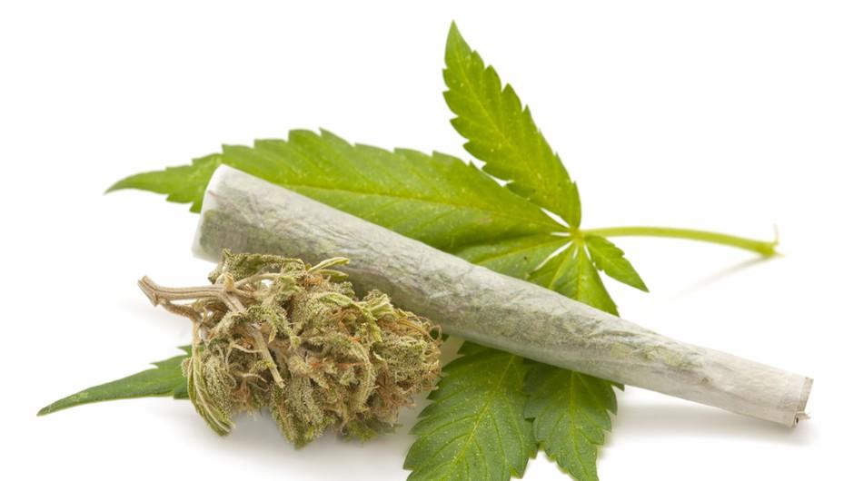 Dobronameren nasvet: Ko voziš, ne kadi marihuane! (foto: shutterstock)