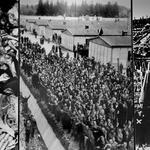 Dachau. (foto: profimedia)