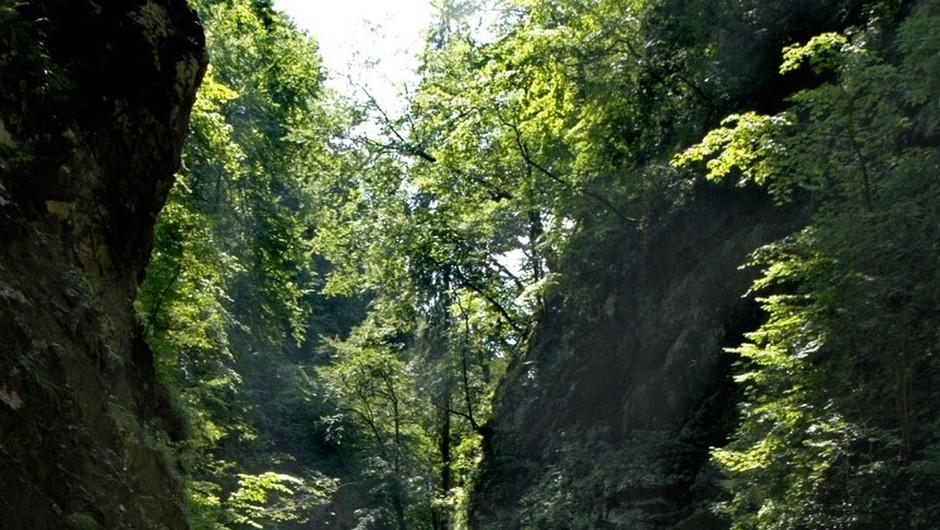 Lepi izleti vabijo k ogledu čudes Slovenije (foto: profimedia)