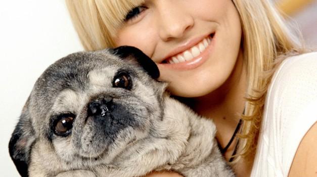 Res veš, kaj ti hoče povedati tvoj pes? (foto: profimedia)