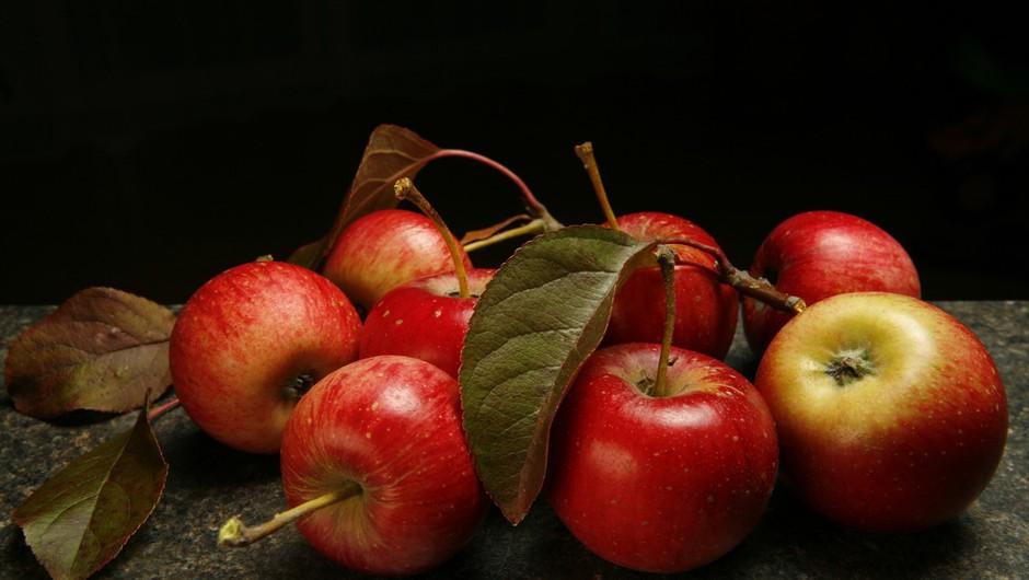 Prihodnji teden se odpira sejem Narava - zdravje (foto: profimedia)