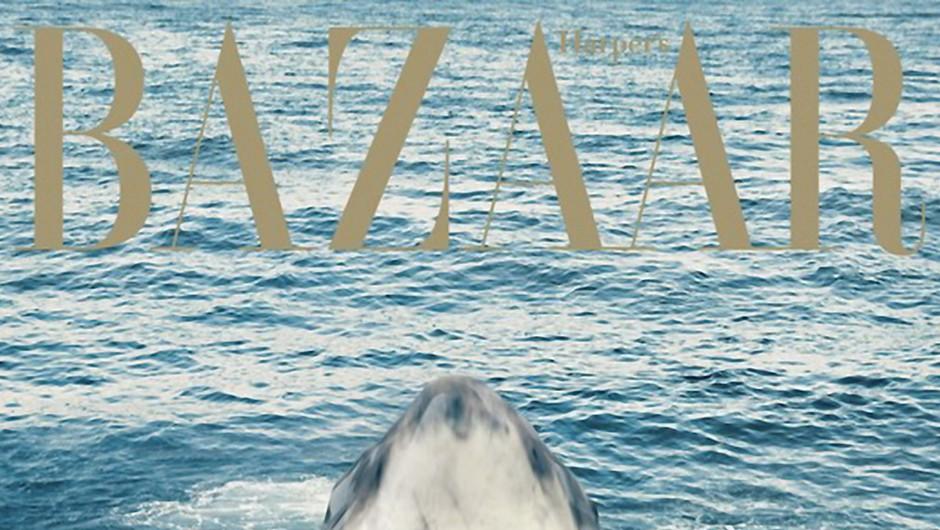 Rihanna za Harper's Bazaar plavala z morskimi psi (VIDEO) (foto: Profimedia)