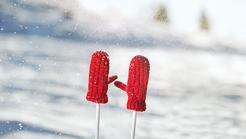 Na sneg z zavarovalno polico