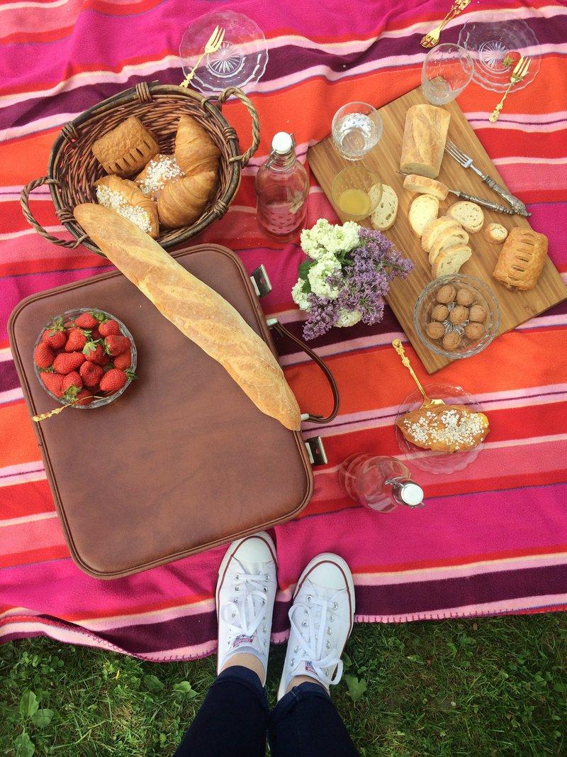Hud piknik