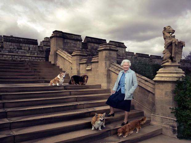 svojimi pasjimi ljubljenčki. V Veliki Britaniji se za kraljičin rojstni dan odvija ...