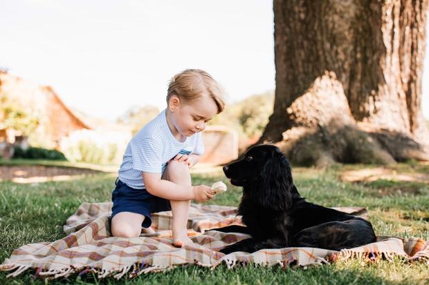 Princ George ravno danes, 22. julija, praznuje 3. rojstni dan in njegova najnovejša fotografija je ta, ki je nastala nekaj …