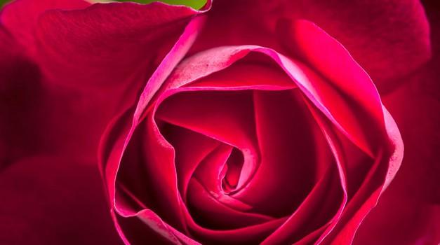 Menstruacija - pomembna vloga, zgrešena prepričanja in moč menstrualne krvi (foto: Profimedia)