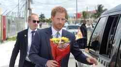 Princ Harry razkriva, kako je videti življenje v Buckinghamski palači
