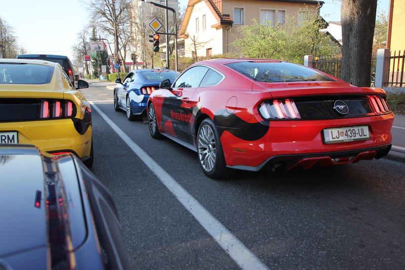 karavana Mustangov