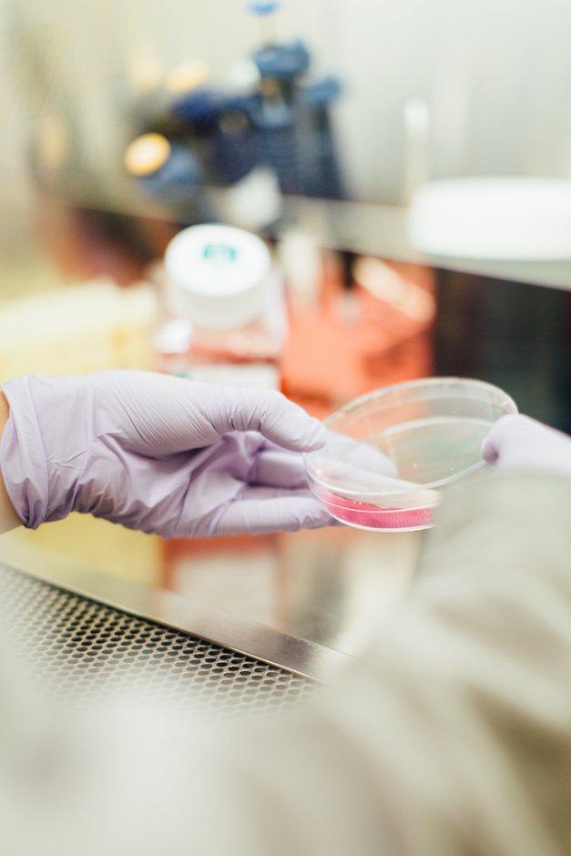 Za ženske v znanosti 2018: Odprt razpis za štipendije v vrednosti 5.000€ (foto: Unsplash/Drew Hays)