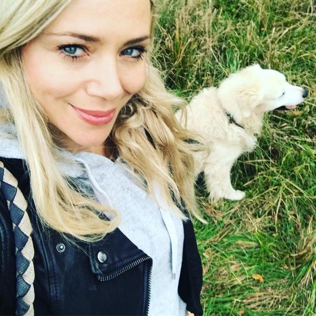Yoda je kosmatinec, ki se sprehaja v družbi znane slovenske igralke Katarine Čas. Ta na svojem Instagram profilu redno objavlja ...