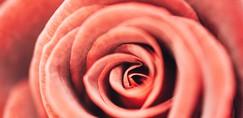 Presenetljive stvari, ki jih prva menstruacija razkriva o tvojem zdravju!