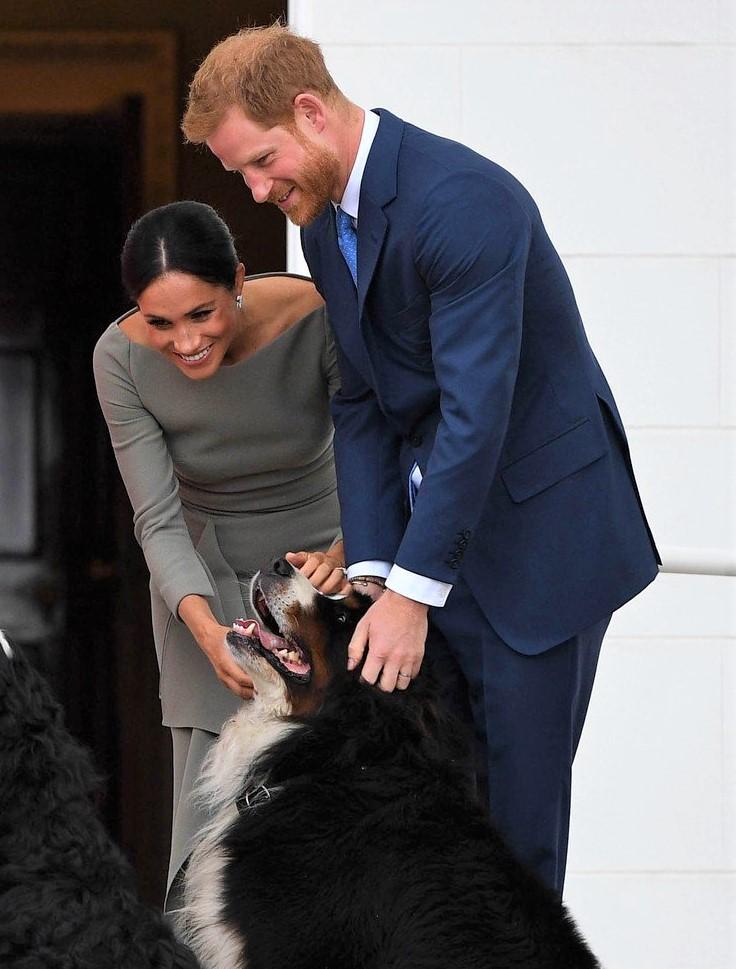 Poglej, kako sta Meghan Markle in princ Harry poimenovala svojega novega družinskega člana! (foto: Profimedia)