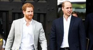 Kaaaj? Nismo vedeli, da sta princ William in Harry v sorodu s TO družino