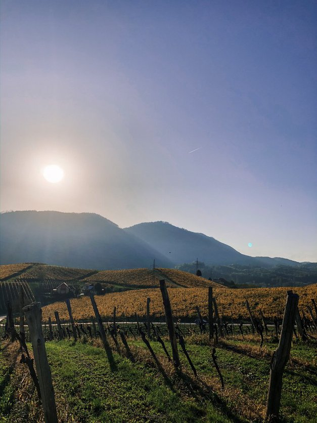 3 čudovite ideje za jesenske izlete po Sloveniji (foto: FOTO: Ana Cepec)