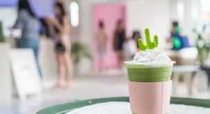 Matcha čaj – zeleni eliksir mladosti zvezdnikov