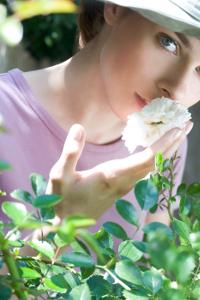 vrtnica